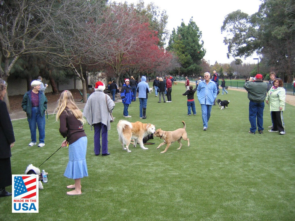 synthetic grass dog park